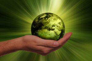 Michael Wühle - Kernkompetenz Nachhaltigkeit